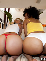 We got 80 some inches of ass today. This weeks feature stars Daiquiri Divine & Paris. These two ladies are super fine with monster big asses.