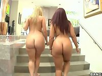 Two nice big ass girls